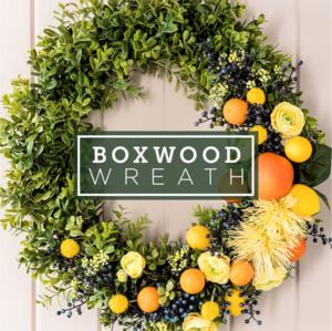 Diy Boxwood Wreath Kit